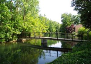 11 - walden_pond
